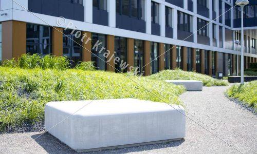 wroclaw-business-garden_D_5D3_7386