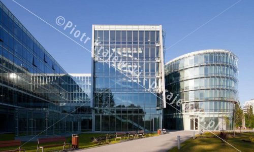 gdynia-ppnt_D_IMG_0091