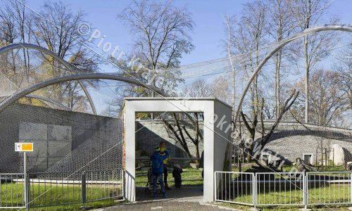 krakow-zoo-pawilon-kotow_02_D_5D3_2378