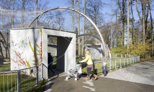 krakow-zoo-pawilon-kotow_03_D_5D3_2372