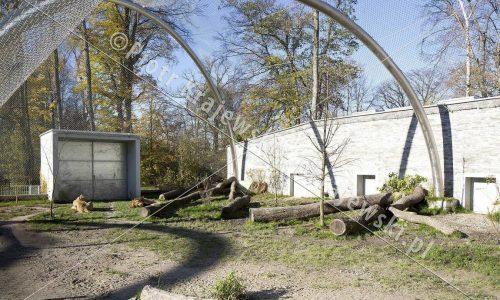 krakow-zoo-pawilon-kotow_09_D_5D3_2492