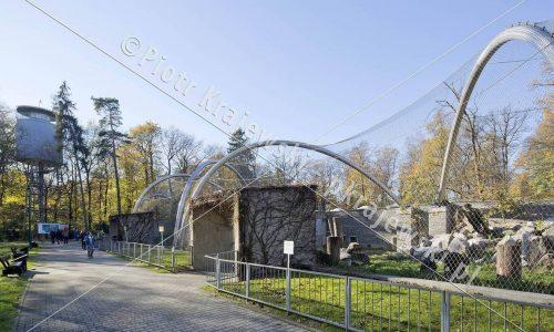 krakow-zoo-pawilon-kotow_17_D_5D3_2426