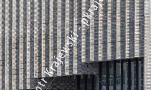 warszawa-greenwings_D_IMG_7790