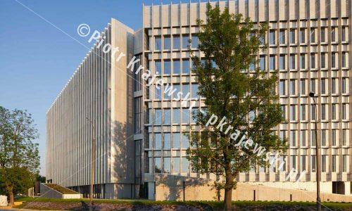 warszawa-greenwings_D_IMG_9260