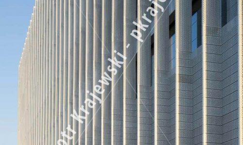warszawa-greenwings_D_IMG_9267
